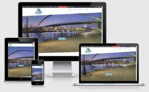 Human-Website Website